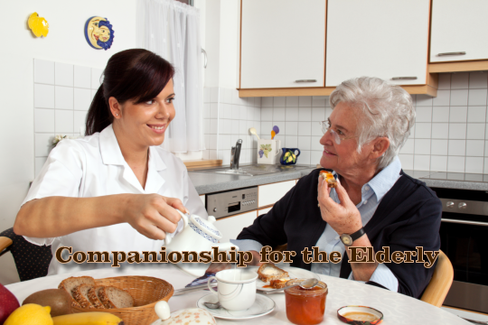Companionship for the Elderly