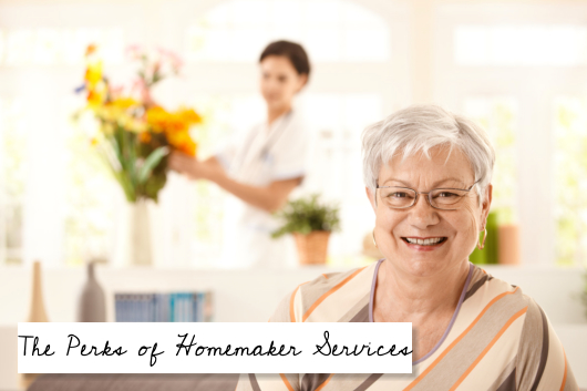 The Perks of Homemaker Services